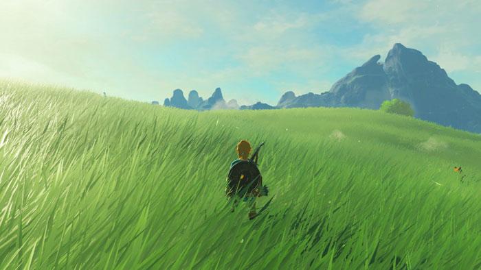"Nintendo explains why they call their environmental artists ""terrain designers"""